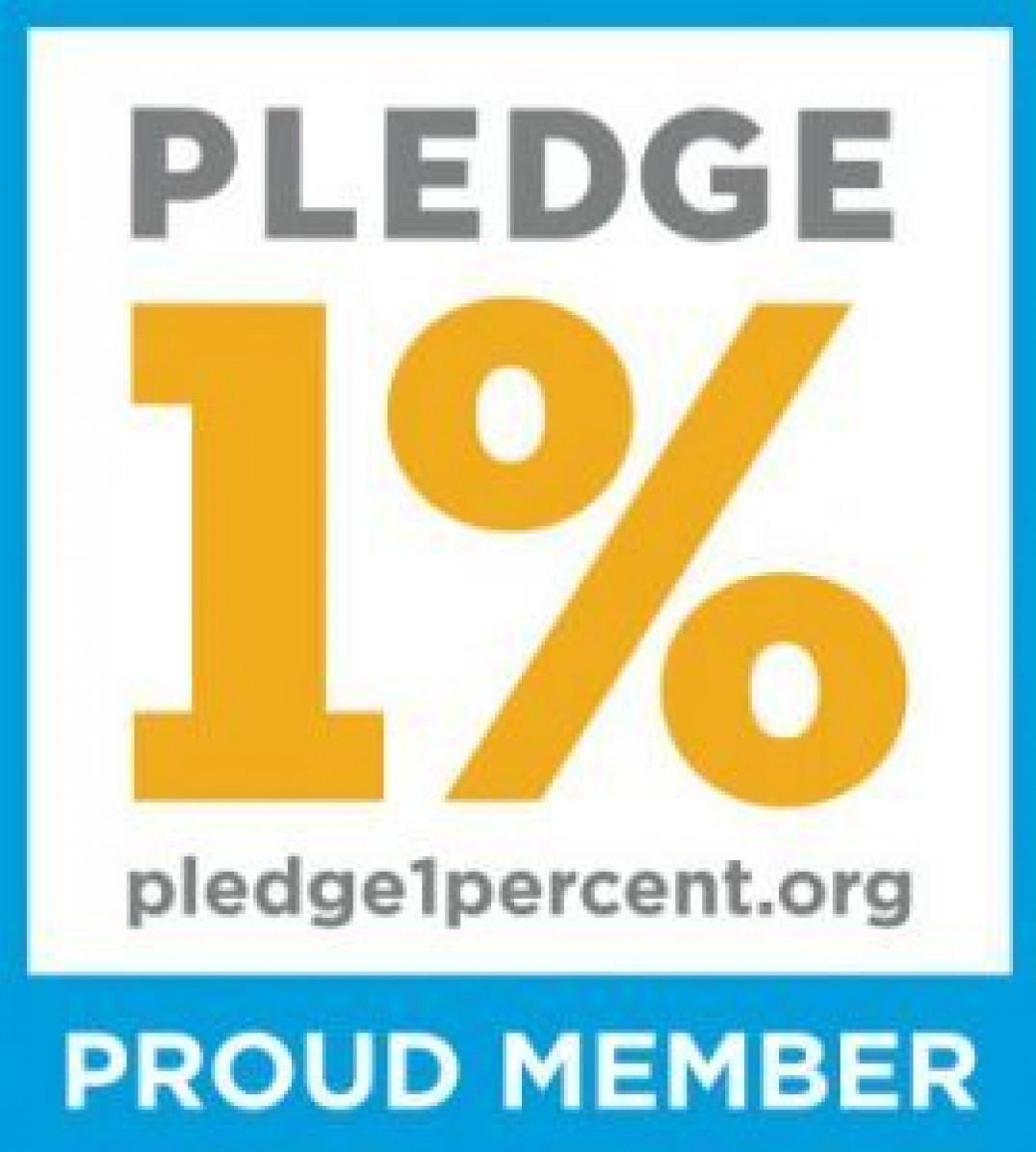 Pledge1 Blog